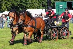 PferdeStark2015-01