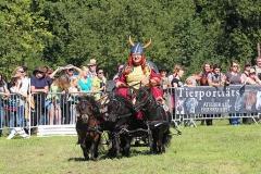 PferdeStark2015-04