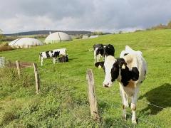 Biogas-Jühnde_LdI